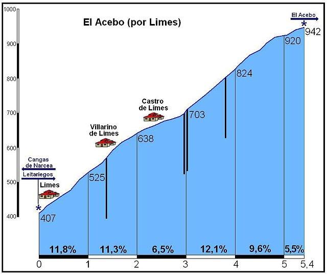 acebo-por-limes_7f23f962