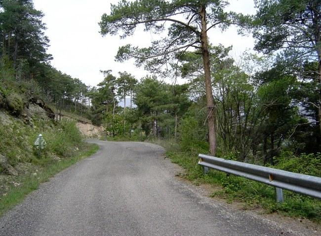 La carretera que sube a Soriguera. Foto de Mariaffoz. Click para ver la galería completa.