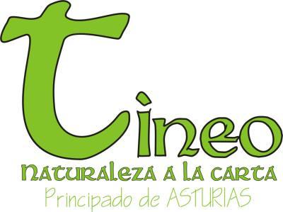 Logo Tineo