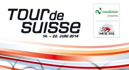 logo suiza 2014